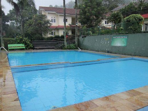 Alfa Resort-Swimming Pool
