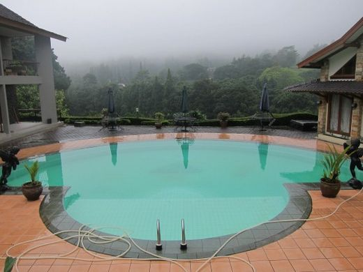 Swimming Pool-Pardede